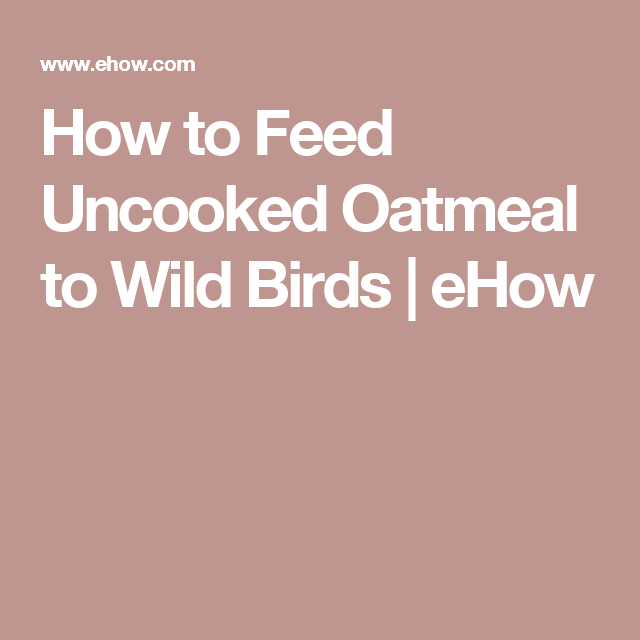 How To Feed Uncooked Oatmeal Wild Birds Ehow All S Creatures