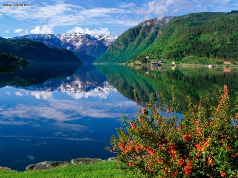 Ulvik Hanrdangerfjord, Norway. One of the most beautiful places I've ever seen. Breathtaking!