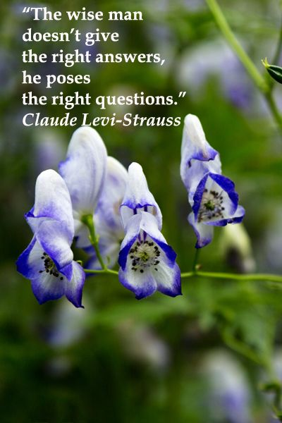 The Wise Man Doesn T Give The Right Answers He Poses The Right Questions Claude Levi Strauss Explore S Savvy Quotes Intelligence Quotes Beautiful Quotes