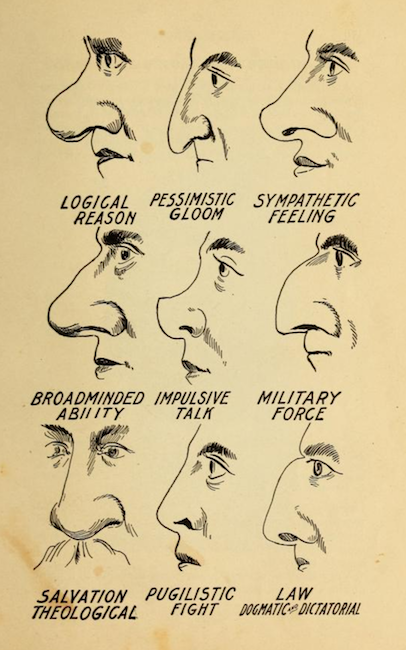Your nose determines your destiny  Phrenology book  1910