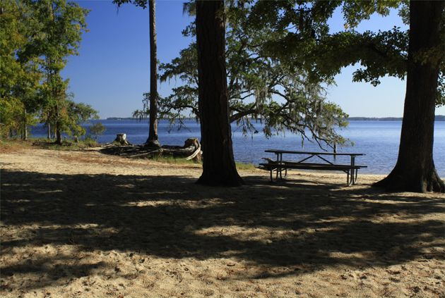 Beaufort County Now » Goose Creek State Park Calendar of Events for January