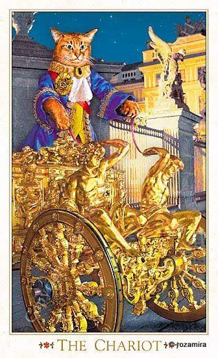 "VII - Le chariot - Tarot baroque ""les chats bohèmes"" par Karen Mahony & Alex Ukolov"