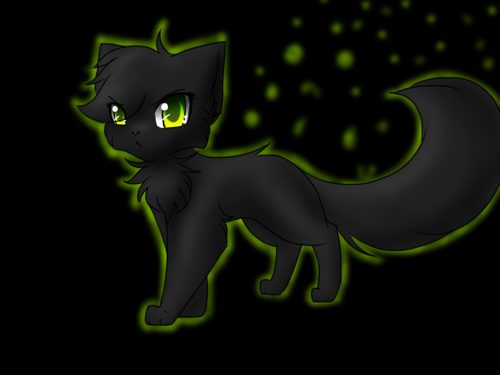 Hollyleaf By Fuzzyfire932 Deviantart Com On Deviantart Hollyleaf