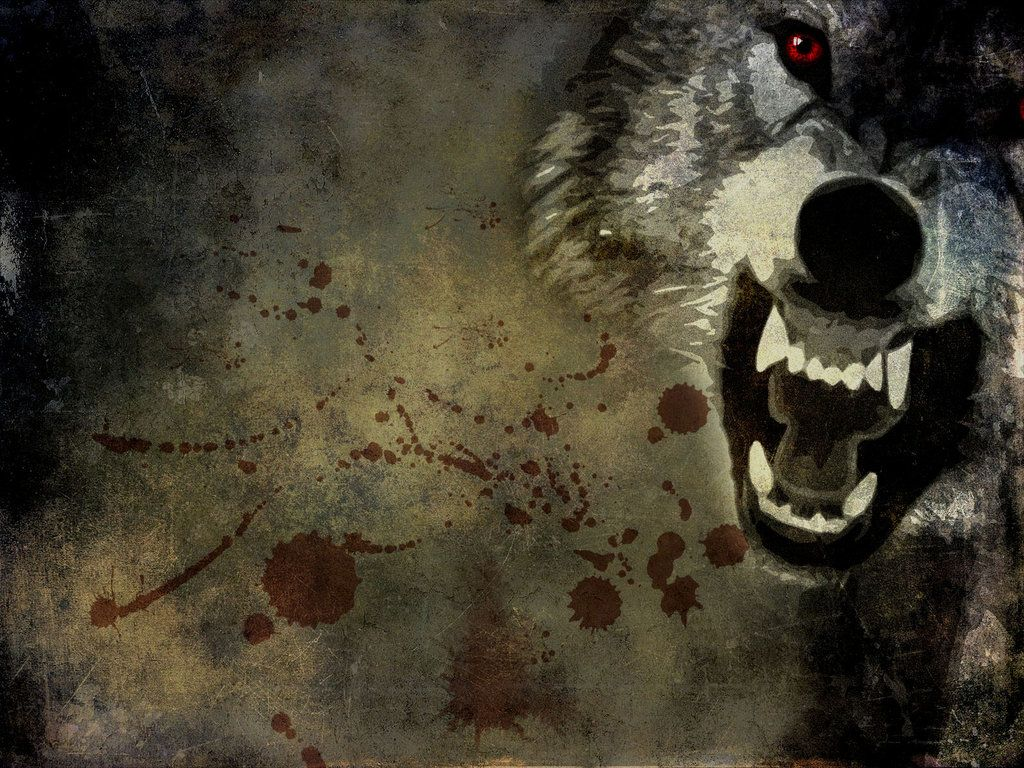 Angry Wolf Wallpaper By Yukichan89 Deviantart Com On Deviantart
