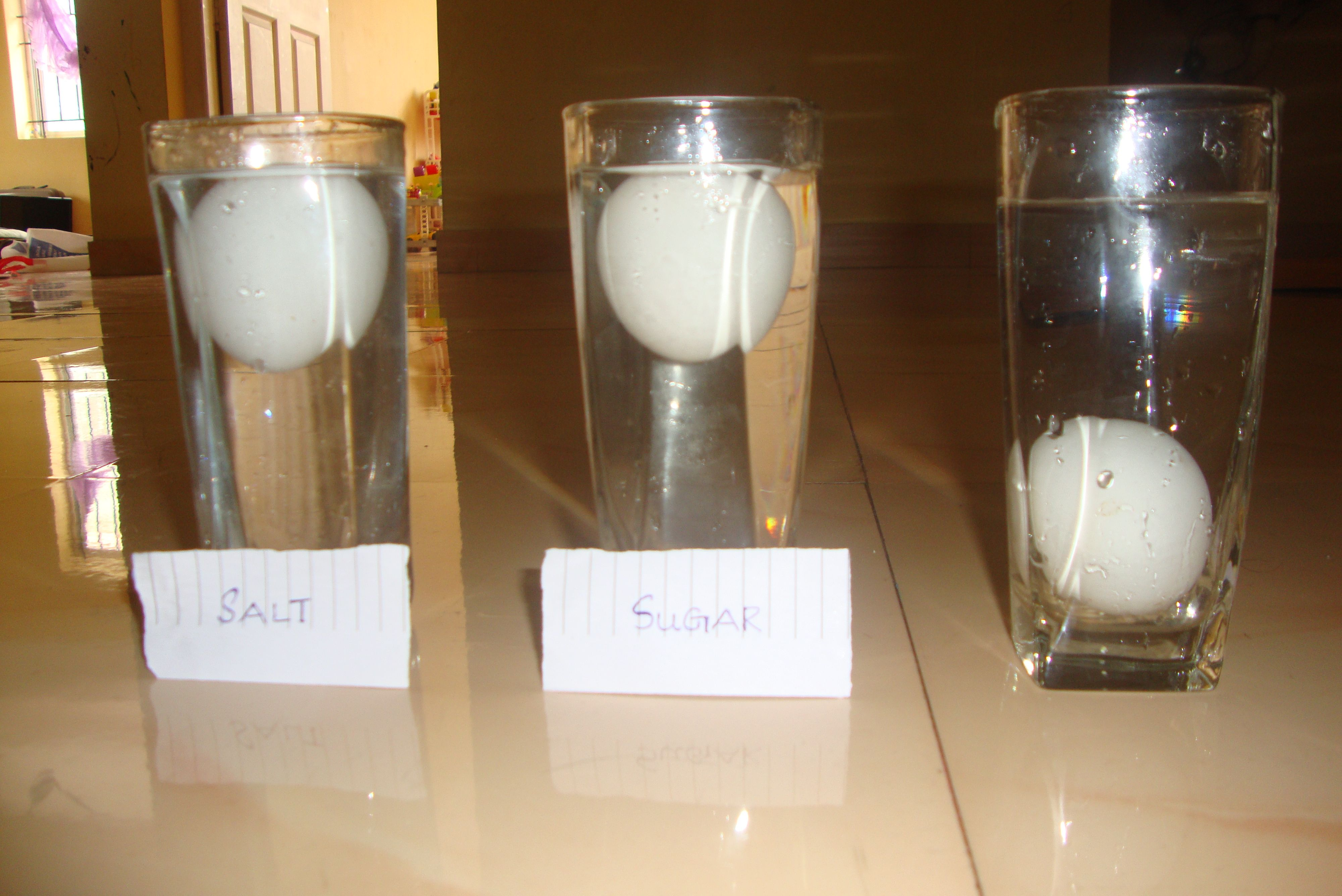 an experiment with just water egg sugar and salt g floating