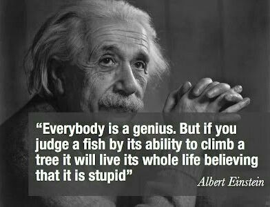 Albert Einstein Everybody Is A Genius Quote Citacoes De Einstein Frases De Albert Einstein Citacoes De Inspiracao