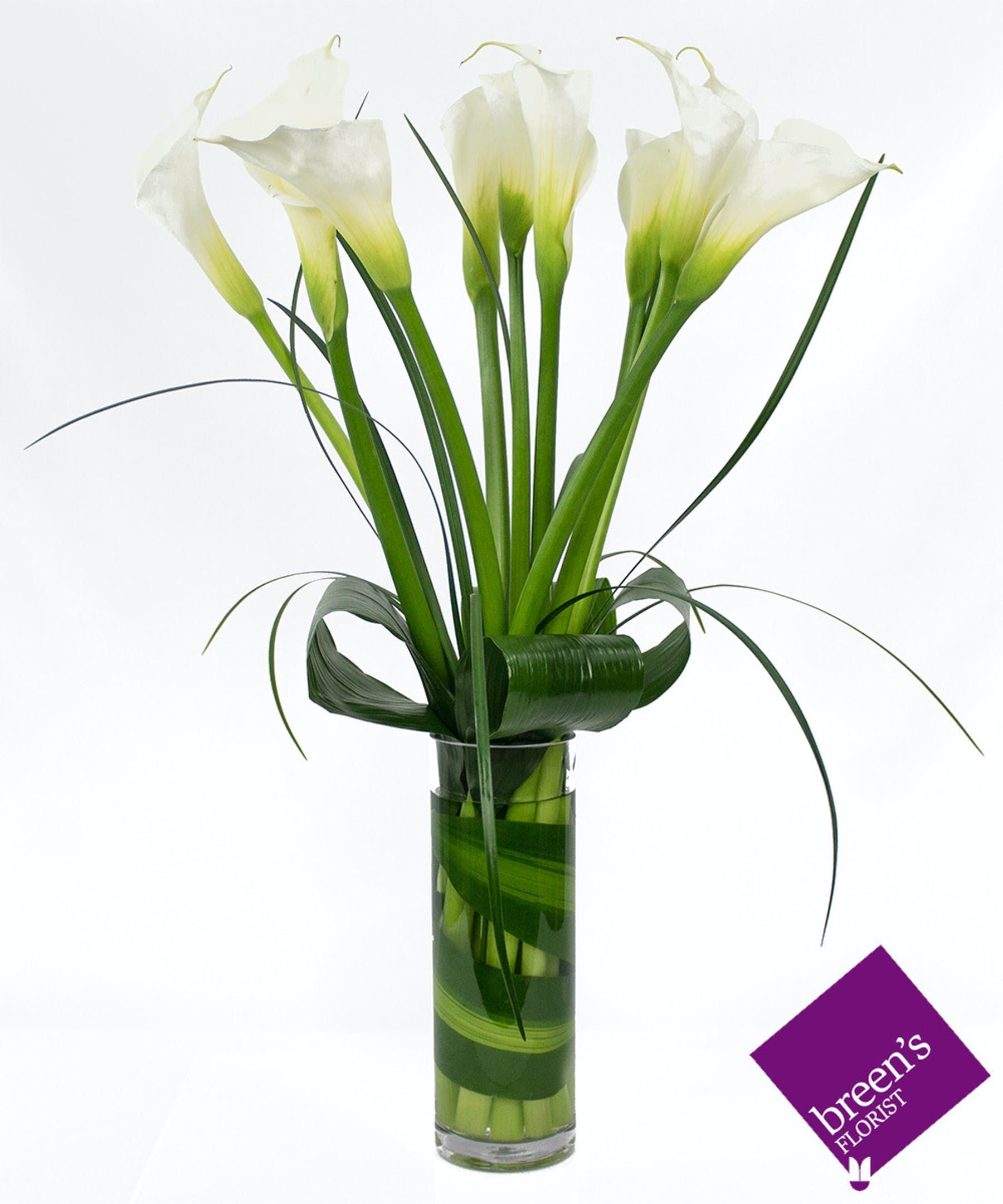 Classy Callas In 2020 Same Day Flower Delivery Flower Delivery Calla
