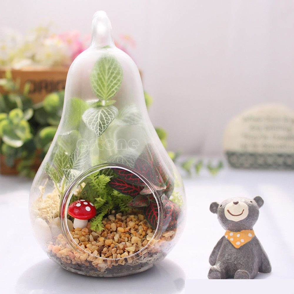 Free shipping hot home decor pear crystal vase planter terrarium