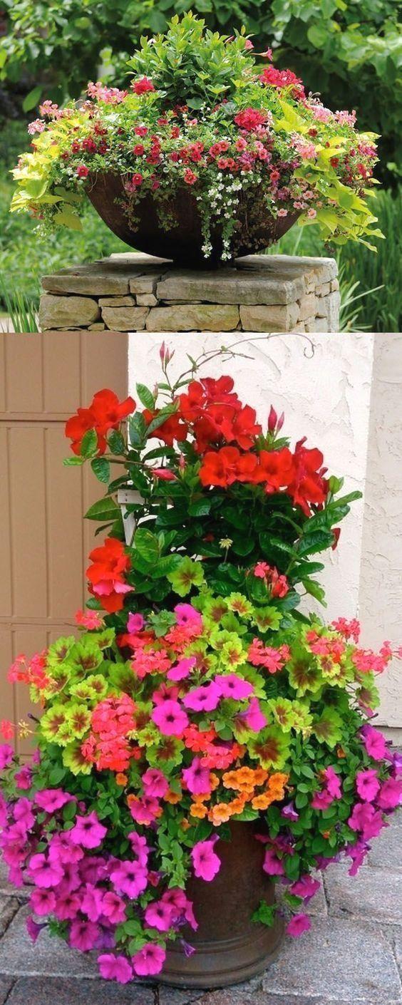 How To Make A Petunia Flower Tower Flores En Maceta Jardineria