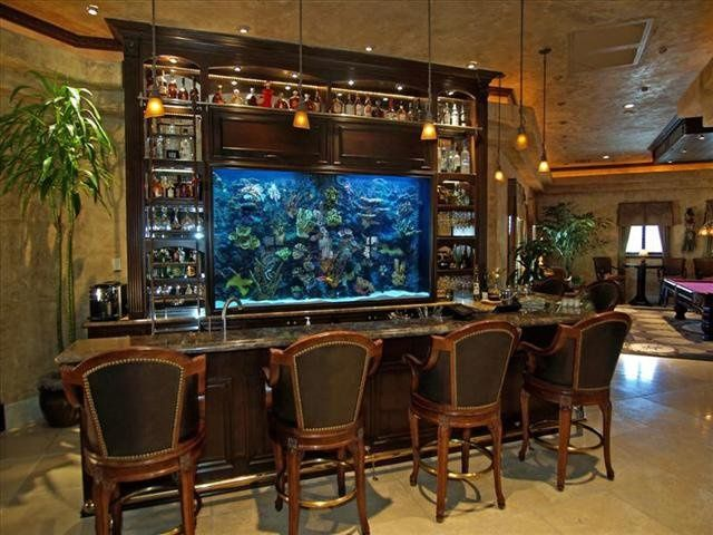 Fish tank display behind in home bar playing house for Fish tank bar