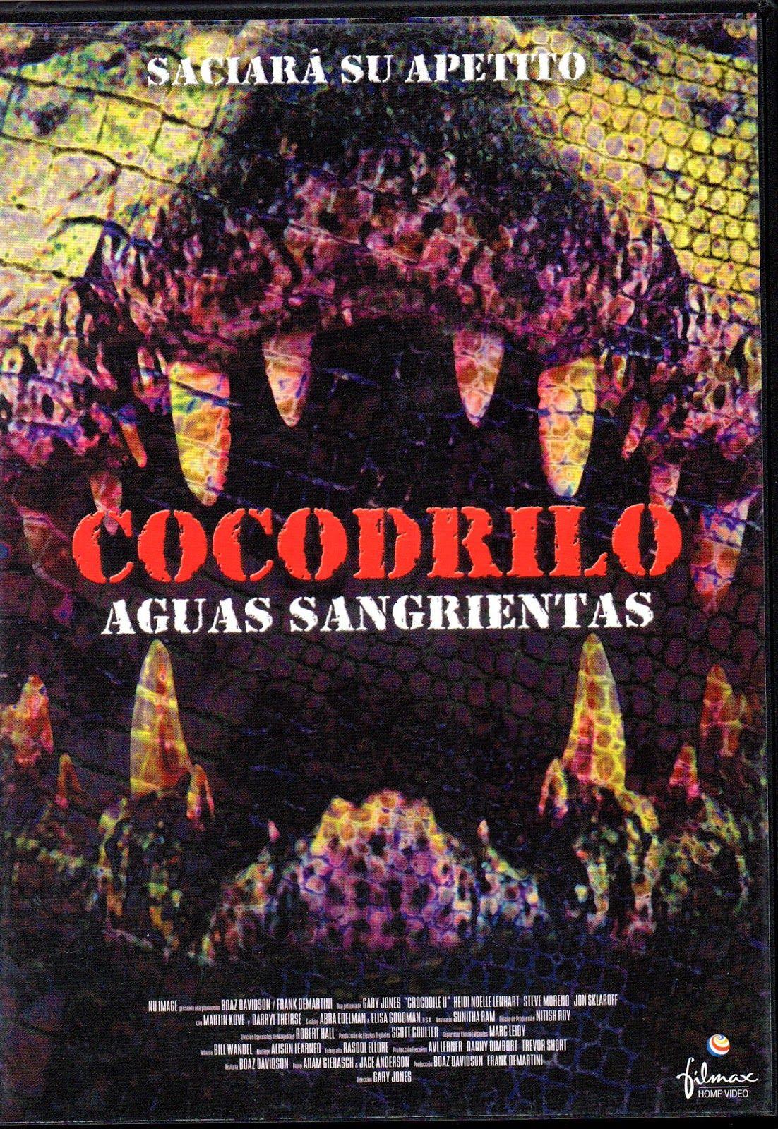 Cocodrilo Aguas Sangrientas Cocodrilo Vacaciones En Mexico Agua