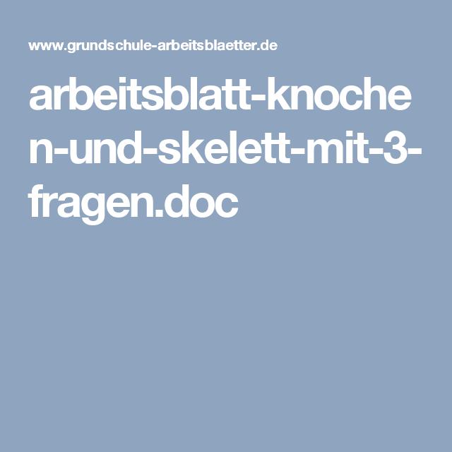 arbeitsblatt-knochen-und-skelett-mit-3-fragen.doc | Charlotte ...