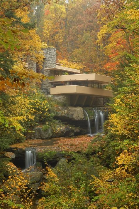 Frank Lloyd Wright Print/Fallingwater Print/Nature Photography Print/Mid Century Modern Art Print/Architecture Print/Architect Wall Decor