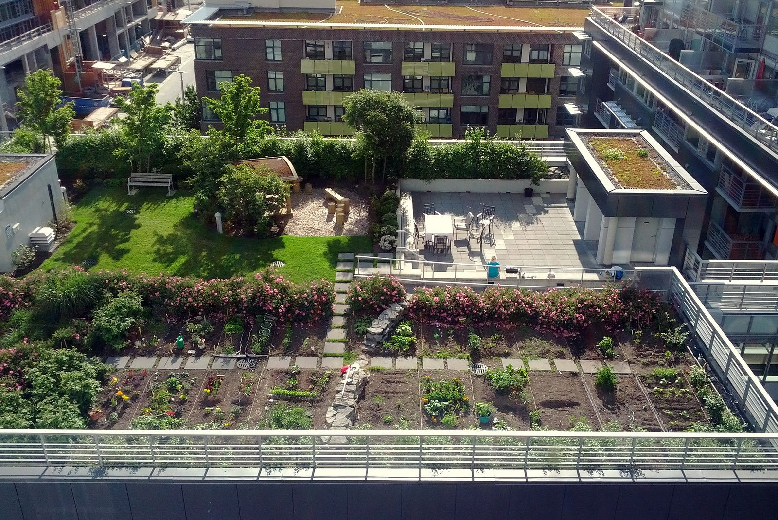 Inspirations Modern And Simple Roof Garden Design For Eco Friendly Ideas Rooftop On The Apartment In City
