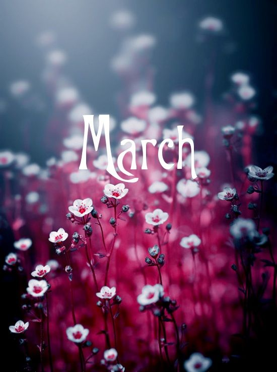 Hello #March be good to us :-) #beautiful #spring #nature   Daily ...