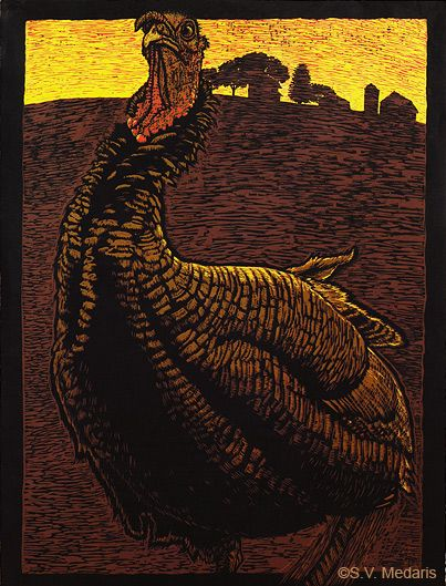 turkey color reduction woodcut by s - Animal Pictures Print Color