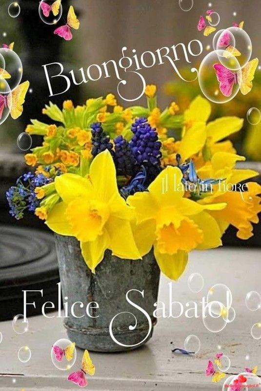 Sabato buongiorno belle immagini 59 buona giornata for Immagini divertenti buongiorno sabato