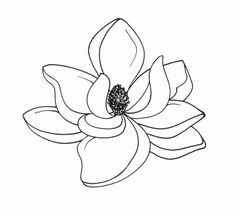 B W Magnolia Clipart Google Search Flower Drawing Flower Line Drawings Magnolia Tattoo