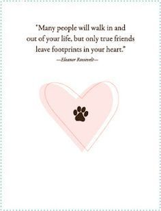 Pet Loss Quotes Paws And Love Pet Sympathy Card  Pet Sympathy Cards Pet Loss And .