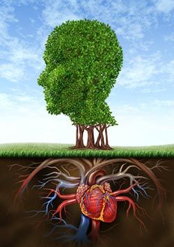 Sprouting brain, rooted heart   Tattoo ideas   Head anatomy