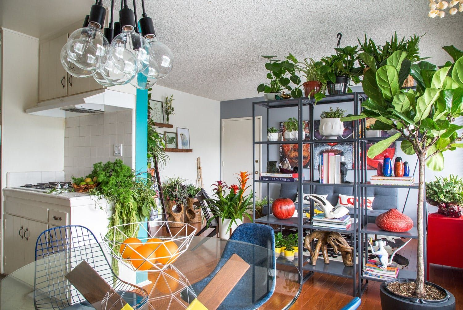 Houseplant tips from regular plantloving people houseplant and