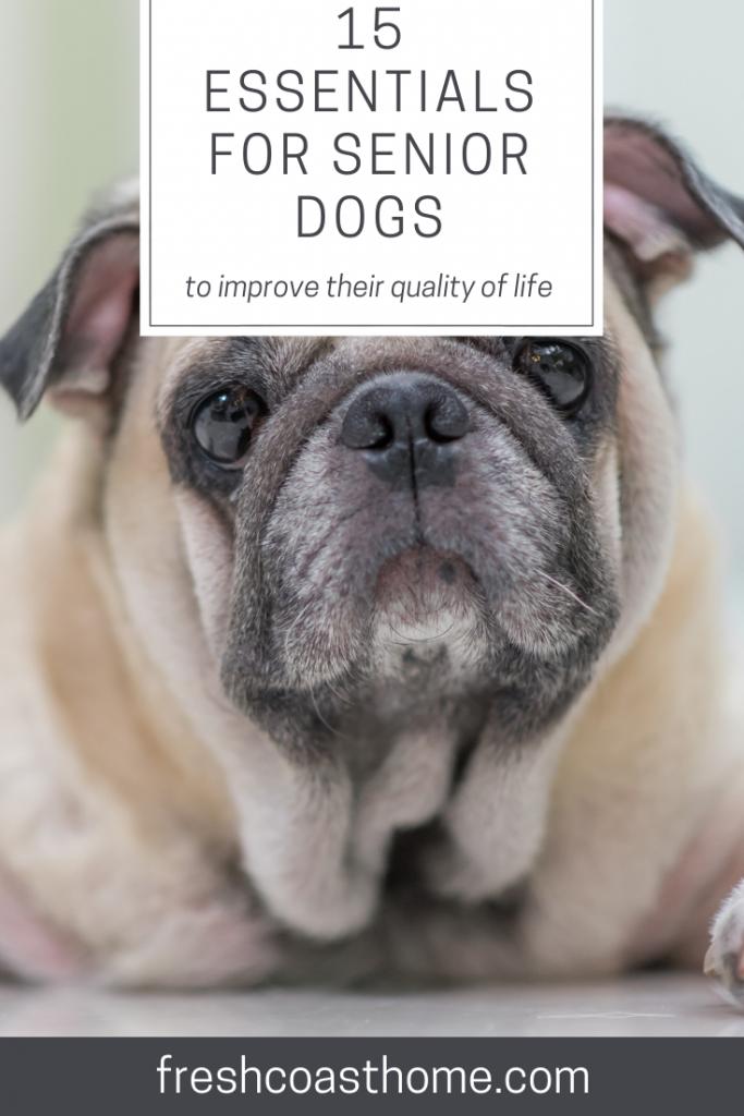 15 Essentials For Senior Pets Pets Pet Fresh Senior Dog