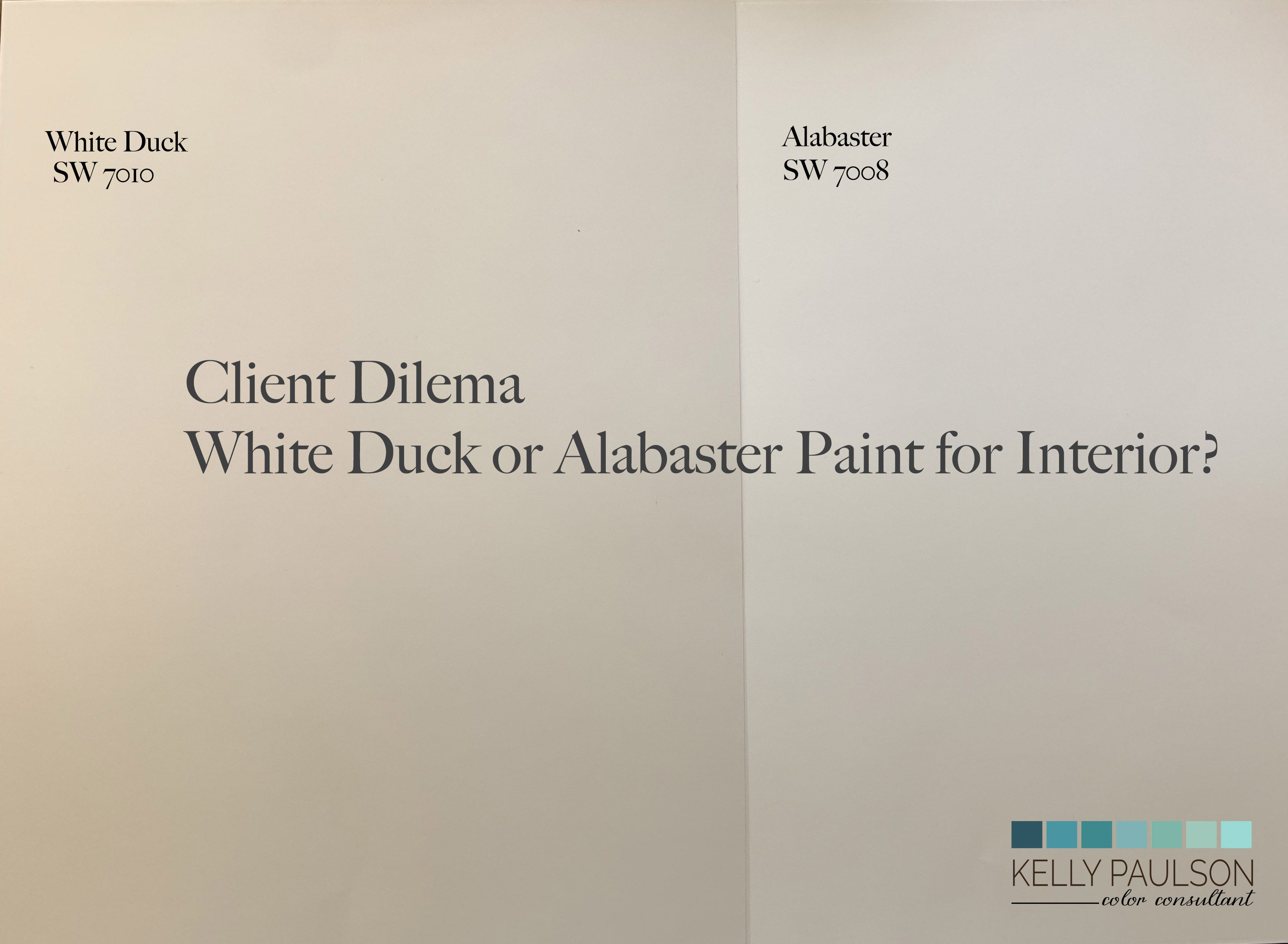 White Duck Or Alabaster Paint Color White Ducks Alabaster