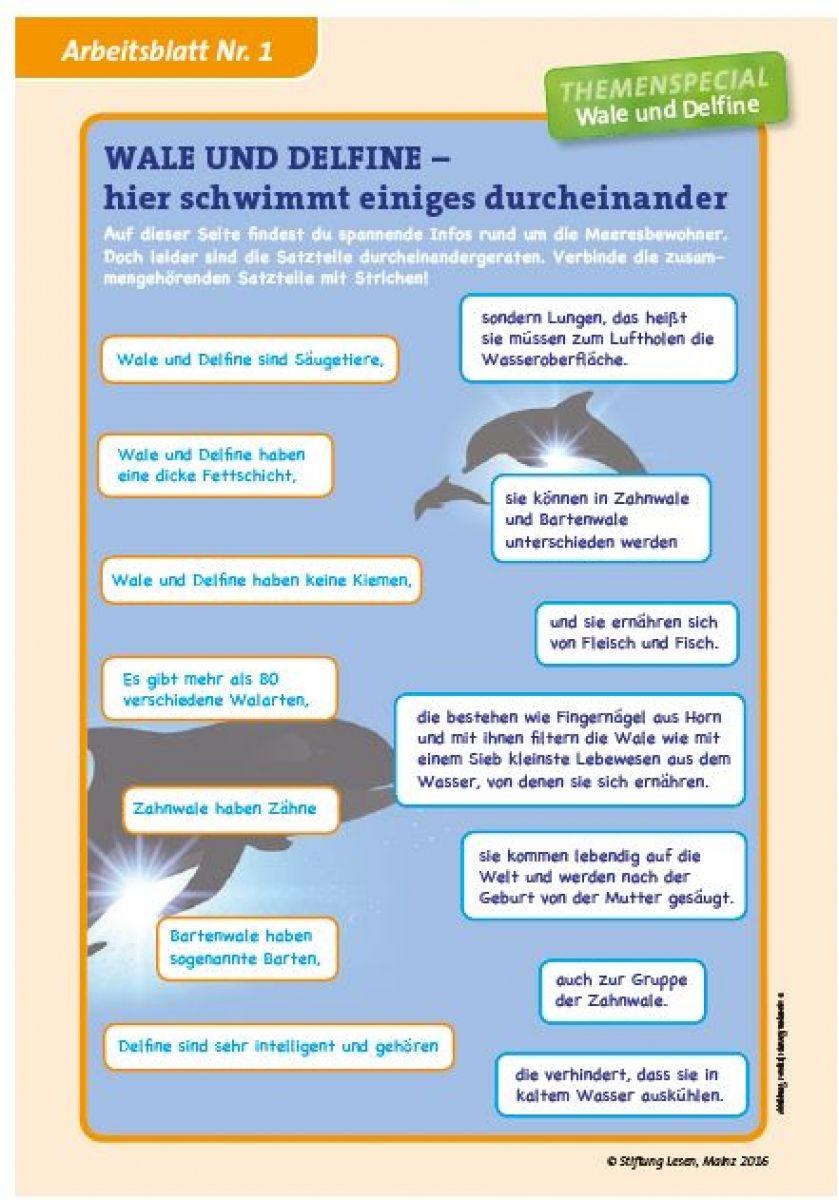 Charmant Bestimmungsschlüssel Arbeitsblatt Fotos - Super Lehrer ...