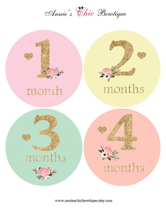 baby girl monthly sticker floral baby sticker glitter baby month