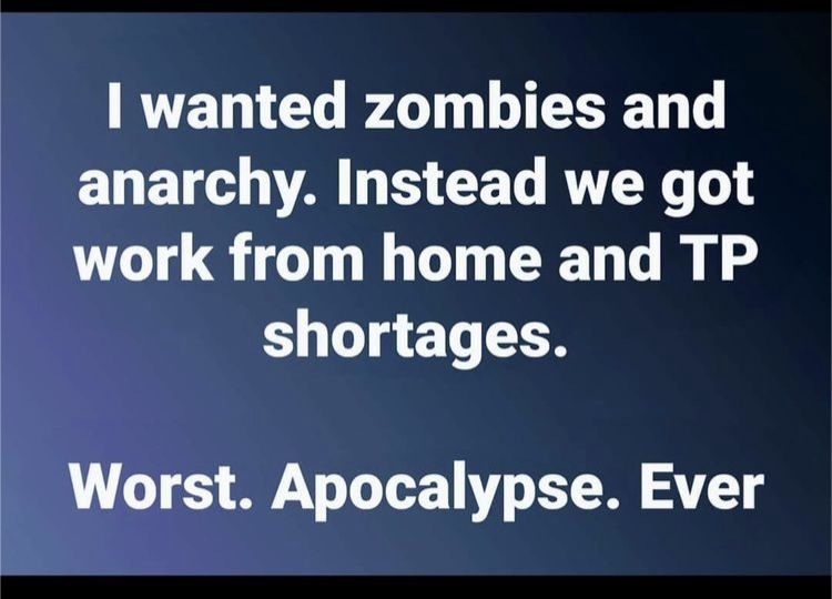 Have An Apocalypse With Zombie Flair At Least In 2020 Funny Quotes Haha Funny Funny Signs