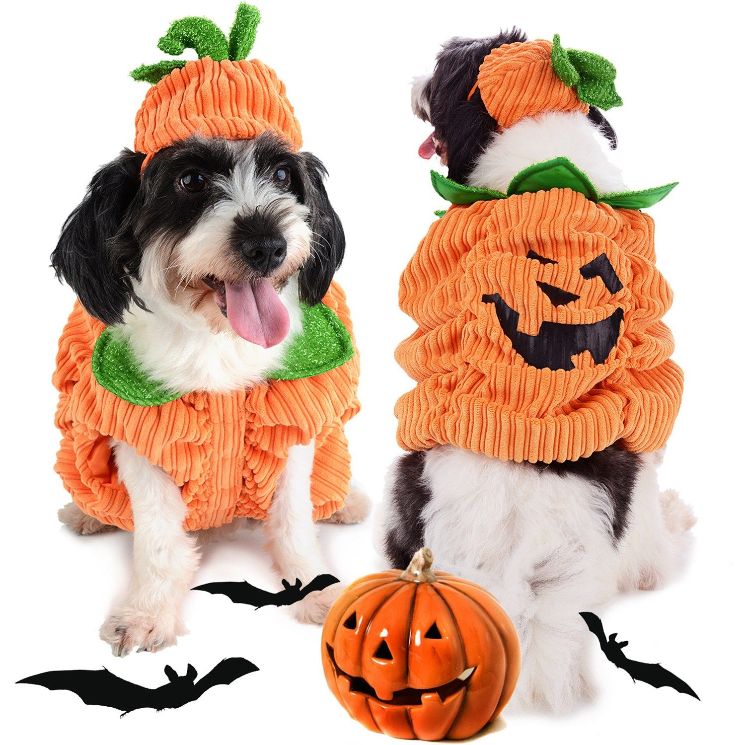 Cute Cartoon Dog Apparel Pumpkin Design Creative Funny Pet