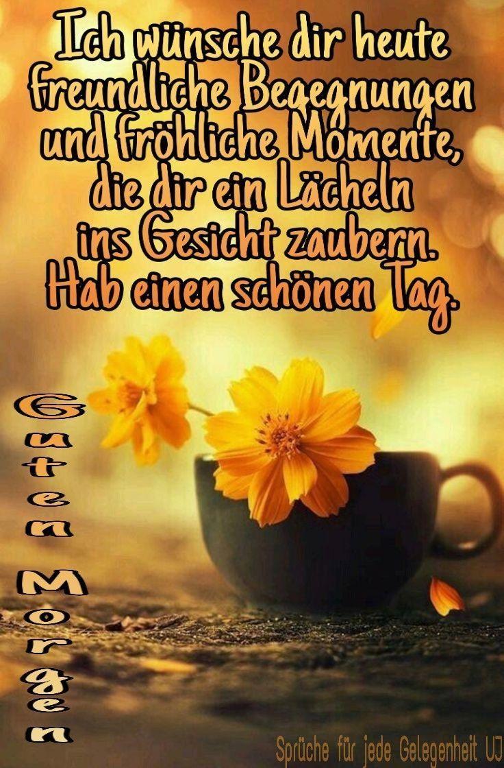 - Einen wunderschönen guten Morgen ☀️ - #einen #guten #