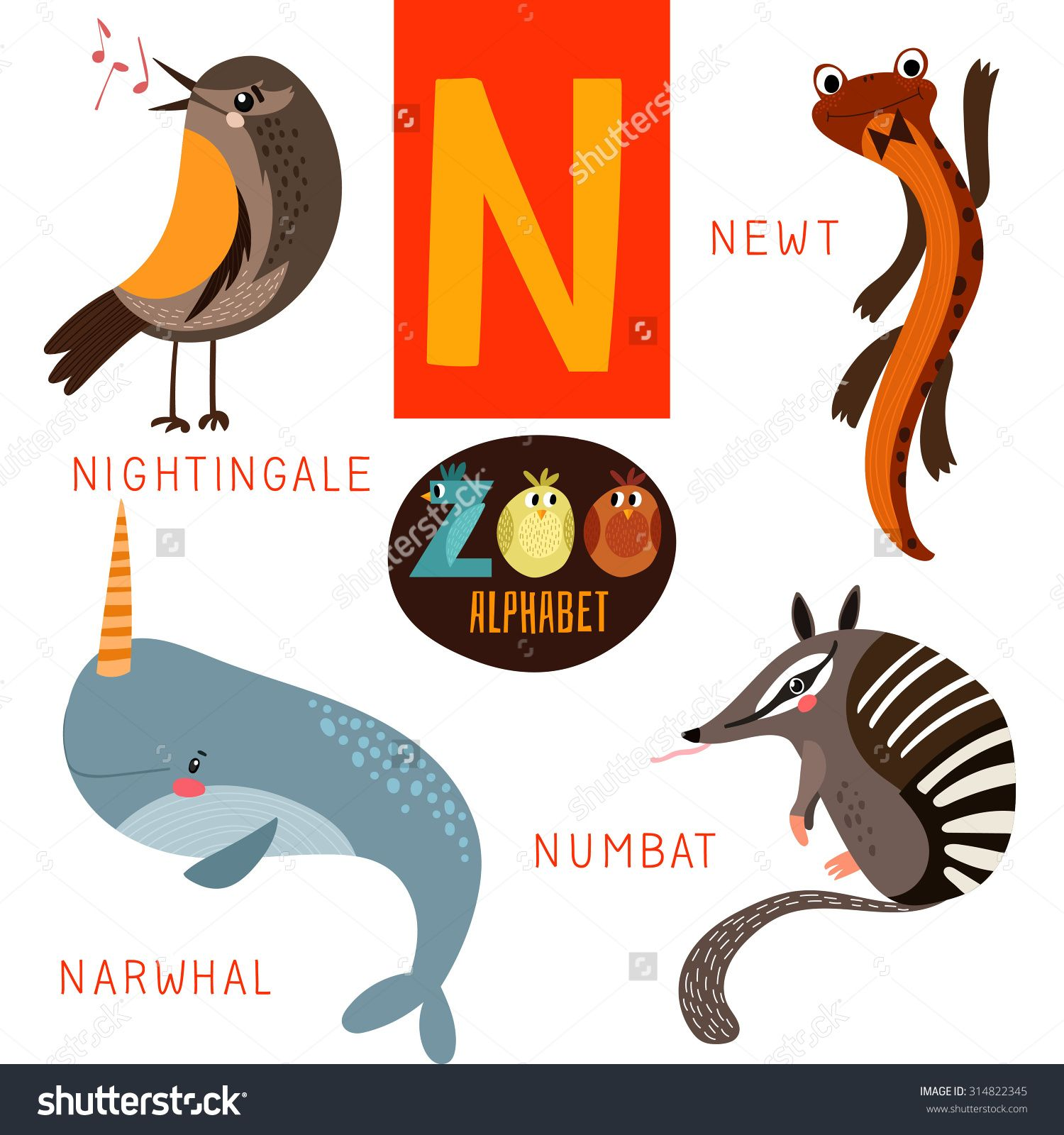 Is There An Animal That Starts With The Letter N