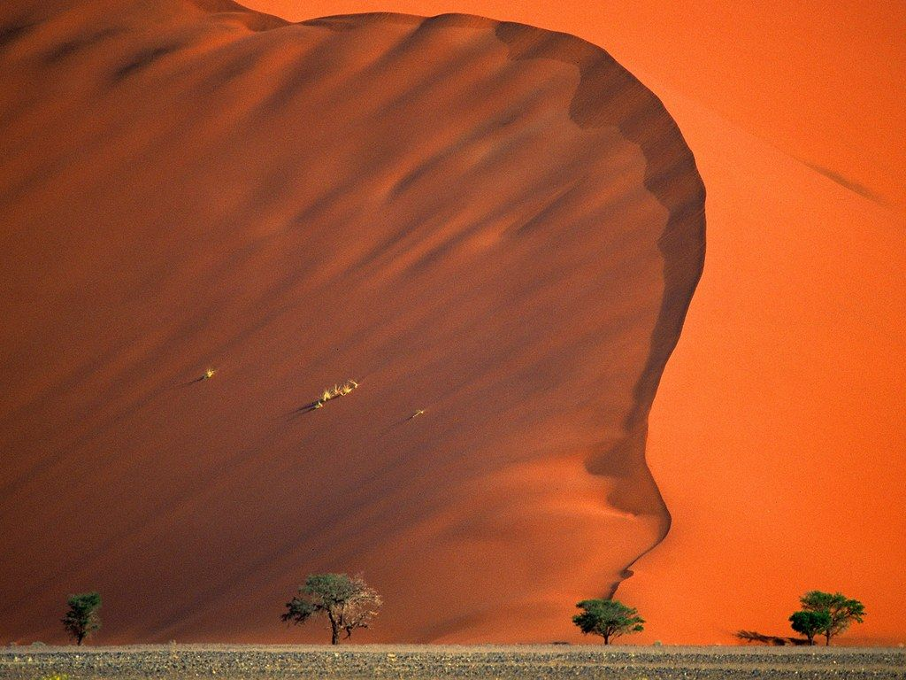 Red sand dunes and skeletal trees make Namibia the closest thing we have to Mars on Earth. The Namib Desert was also the filming location for Mad Max: Fury Road.