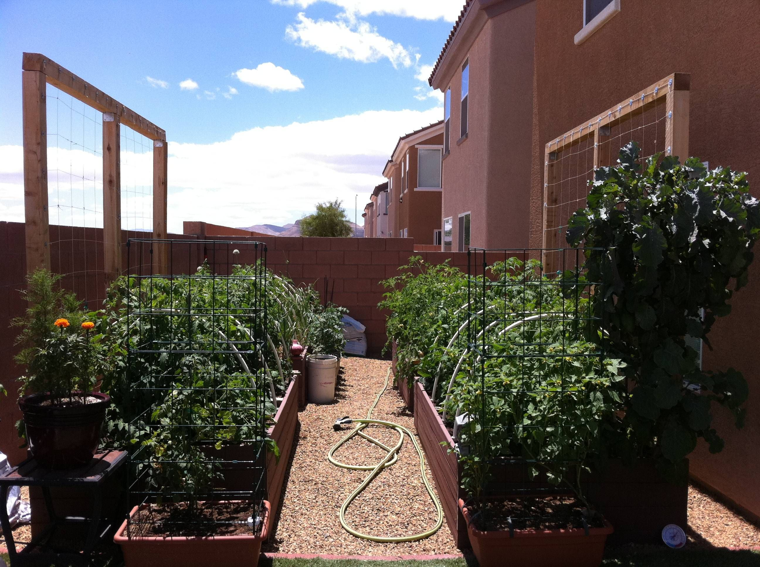 This shows pictures of raised beds in las vegas the beds for Garden design las vegas