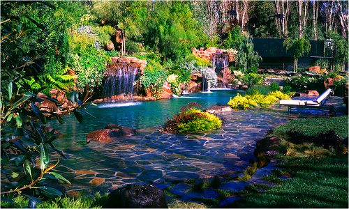 Serving the greater los angeles area ultimate water creations is your premiere source for for Natural swimming pools los angeles