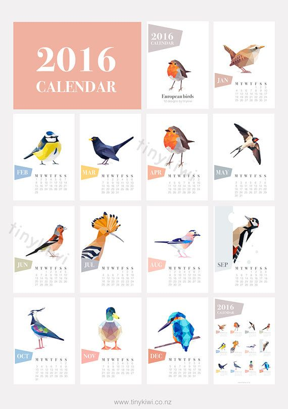 A 2016 calendar made of 12 tinykiwi european and dutch bird prints.