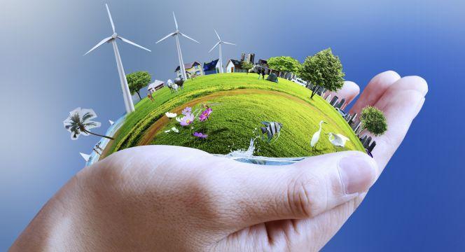 Nosotros como individuos hemos de preocuparnos por el medio ambiente, por eso tenemos que realizar bastantes esfuerzos a fin de lograr un futuro más saludable y sostenible. Decir que cuidamos de nuestro ambiente es decir también que cuidamos de nuestra salud, por lo que hay diversas maneras de cuidar del medio ambiente.