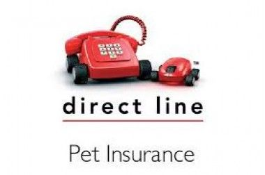 Direct Line Pet Insurance Dog Insurance Reviews Edogadvisor