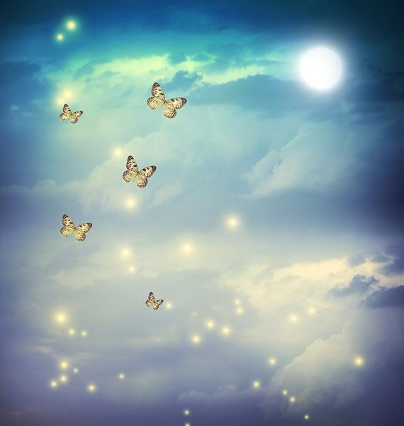 night Sky Backdrop butterfly with moon and firefly