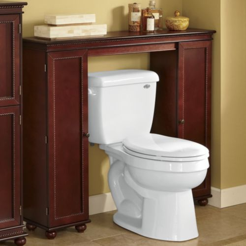 A Great Place To Hide Toilet Bowl Brush And Plunger Maybe Build