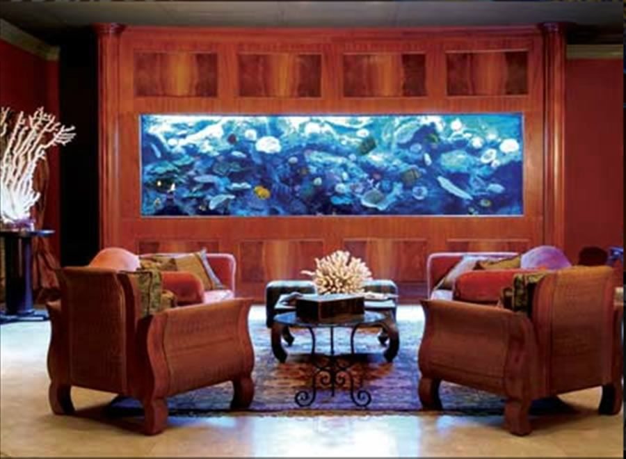 Home Aquarium Design Ideas: Home Aquarium Ideas: The Aquarium Buyers Guide Luxury
