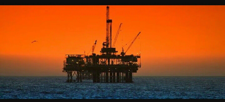 JOY EVERYWHERE AS OPEC PLANS TO CREATE OILBACKED