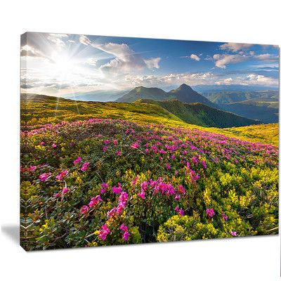 """DesignArt 'Summer Day Rhododendron Flowers' Photographic Print on Wrapped Canvas Size: 12"""" H x 20"""" W x 1"""" D"""