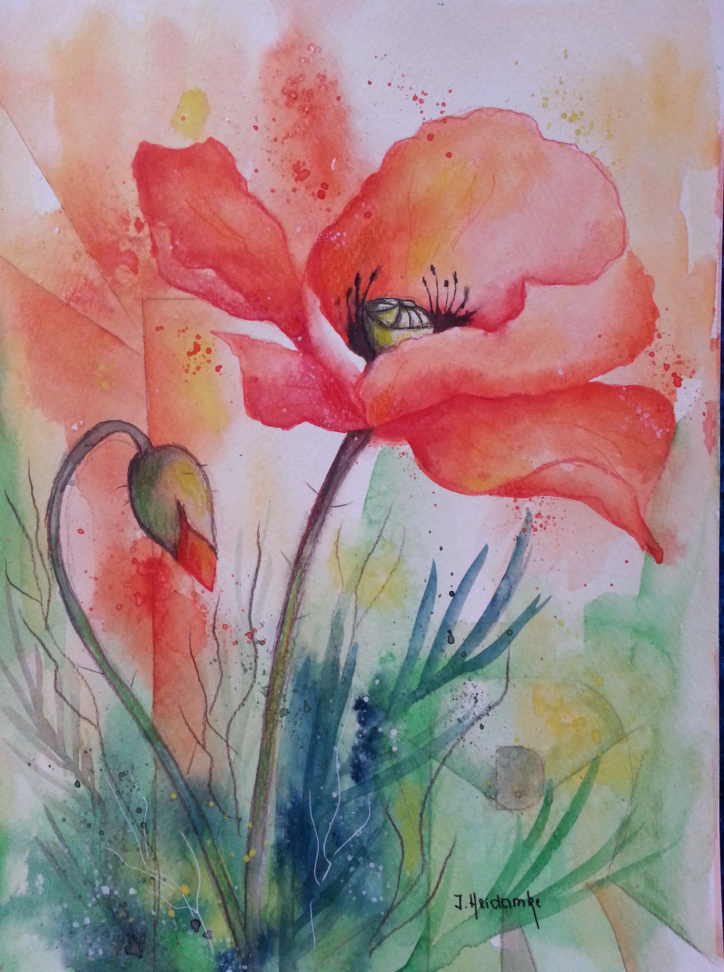 Poppy Watercolor Floral Watercolor Watercolor Flowers Paintings Flower Painting