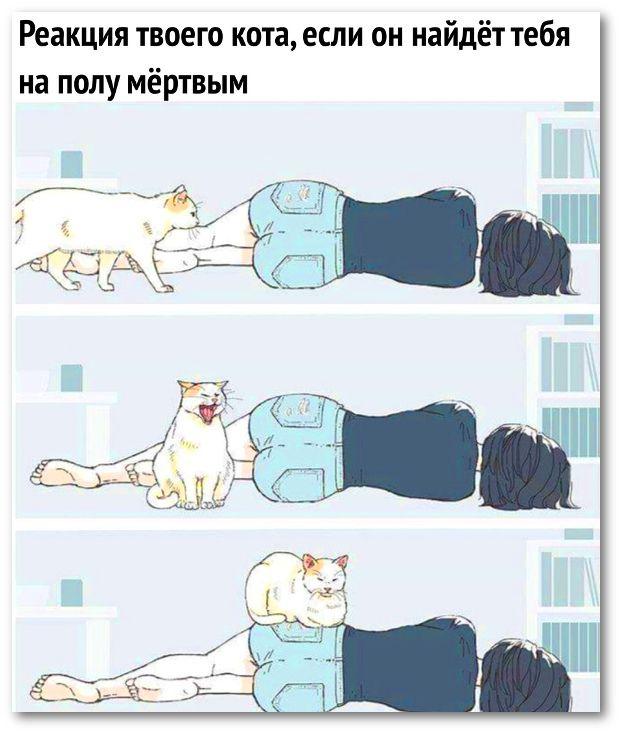 если спать на полу худеешь