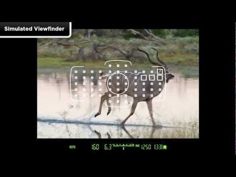 Canon EOS 5D Mark III - Tutorial AI Servo Adjustments 3/14