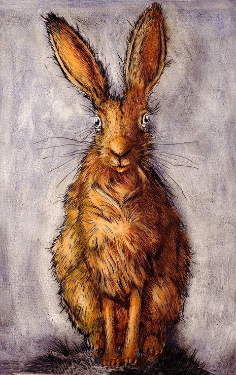Mr Hare by Ian MacCulloch