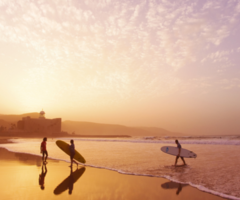 live. love. surf.