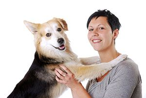 Pin On Pet Health And Care Information